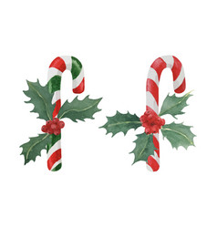 Candy cane with holly vector