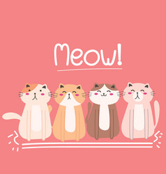 cute cat background vector image