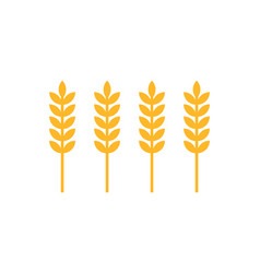 ear of wheat icons closeup set vector image