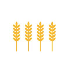 ear wheat icons closeup set vector image