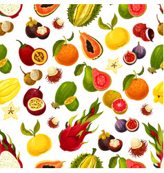 exotic fresh fruits seamless pattern vector image