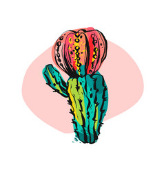 hand drawn abstract collage graphic cactus vector image