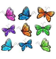 Nine colorful butterflies vector image