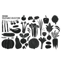 scandinavian hand drawn vegetables monochrome vector image