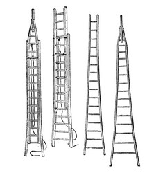 Tree and extension ladder vintage vector