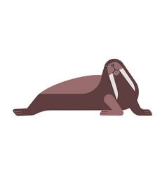 walrus flat nautical polar vector image