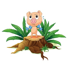 A pig exercising above the stump vector image