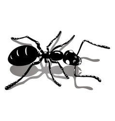 Ant icon image vector