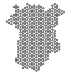 Grey hexagon chechnya map vector