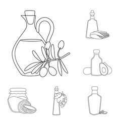 Isolated object of healthy and vegetable symbol vector