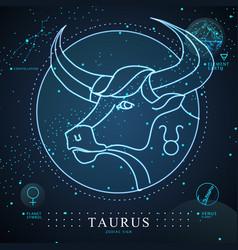 Magic card with astrology taurus neon zodiac sign vector
