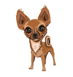 merry little dog with a nice face vector image