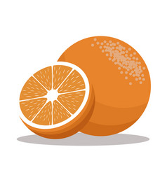 Orange nutrition healthy image vector