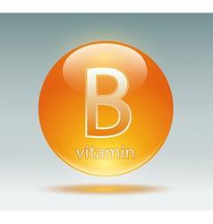 Vitamin B vector