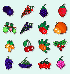 autumn berries stickers set on blue background vector image