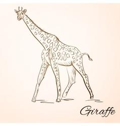 Doodle giraffe vector