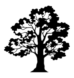 Oak tree pictogram black silhouette and contours vector