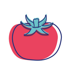 Red healthy tomato vegetable icon vector
