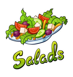 Salads lettering and vector