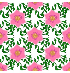 Seamless color pattern with flowers vector image vector image