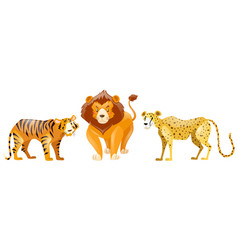 Tigers and lion on white background vector
