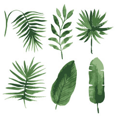 Watercolor tropical leaves vector