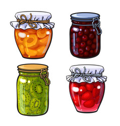 Apricot cherry strawberry and kiwi jam vector