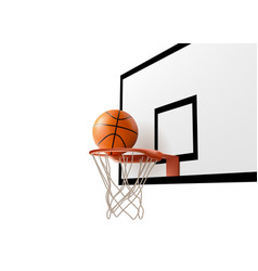 basketball ball falling into ring net at backboard vector image