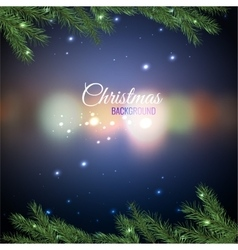 Christmas tree branches 02 A vector image