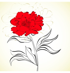 red beautiful flower vector image vector image