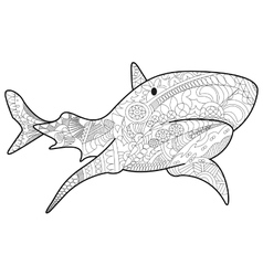 Shark Coloring for adults vector