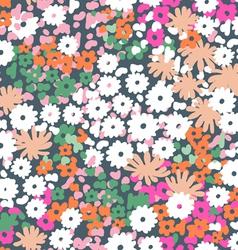 popcorn flowers vector image vector image