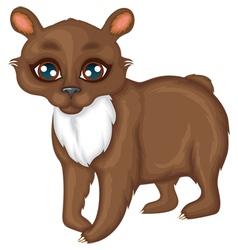 Cute little bear vector image