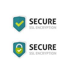 ssl certificate icon secure encryption vector image vector image