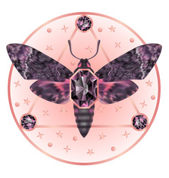 Death head moth jewelry mystical pattern vector