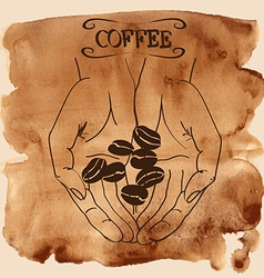 Human hands holding coffee beans vector image