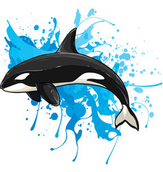Killer whale isolated vector