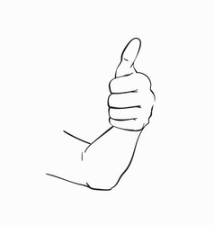 sketch thumb up hand drawn in line art style vector image