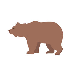brown bear in flat design vector image