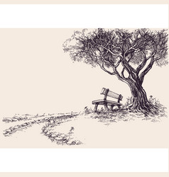 park sketch a wooden bench under the tree vector image
