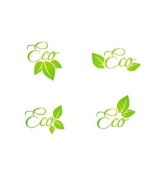 Set of green leaf eco concept icons vector image vector image