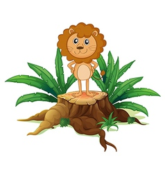 A little lion standing on a stump with leaves vector