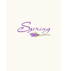 Cards with crocus spring flowers vector