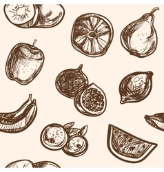 Collection of hand-drawn fruits vector