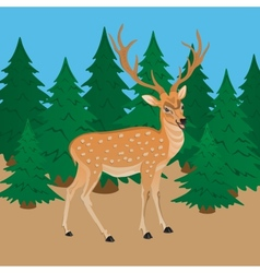 Deer on a background of green forest vector
