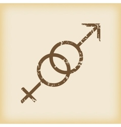 Grungy gender symbols icon vector image