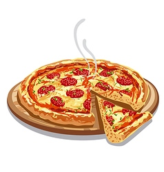 pizza salami on wood board vector image