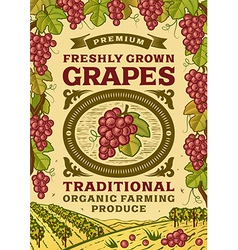 Retro grapes poster vector image