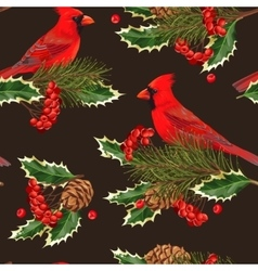 Seamless cardinal and holly vector image