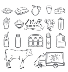 Set Hand drawn decorative milk icons vector image